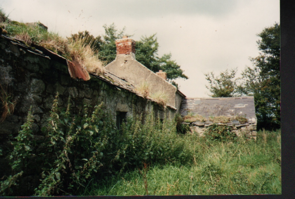 One of the Ruined Griffin Houses in Knocknaboley, 1989