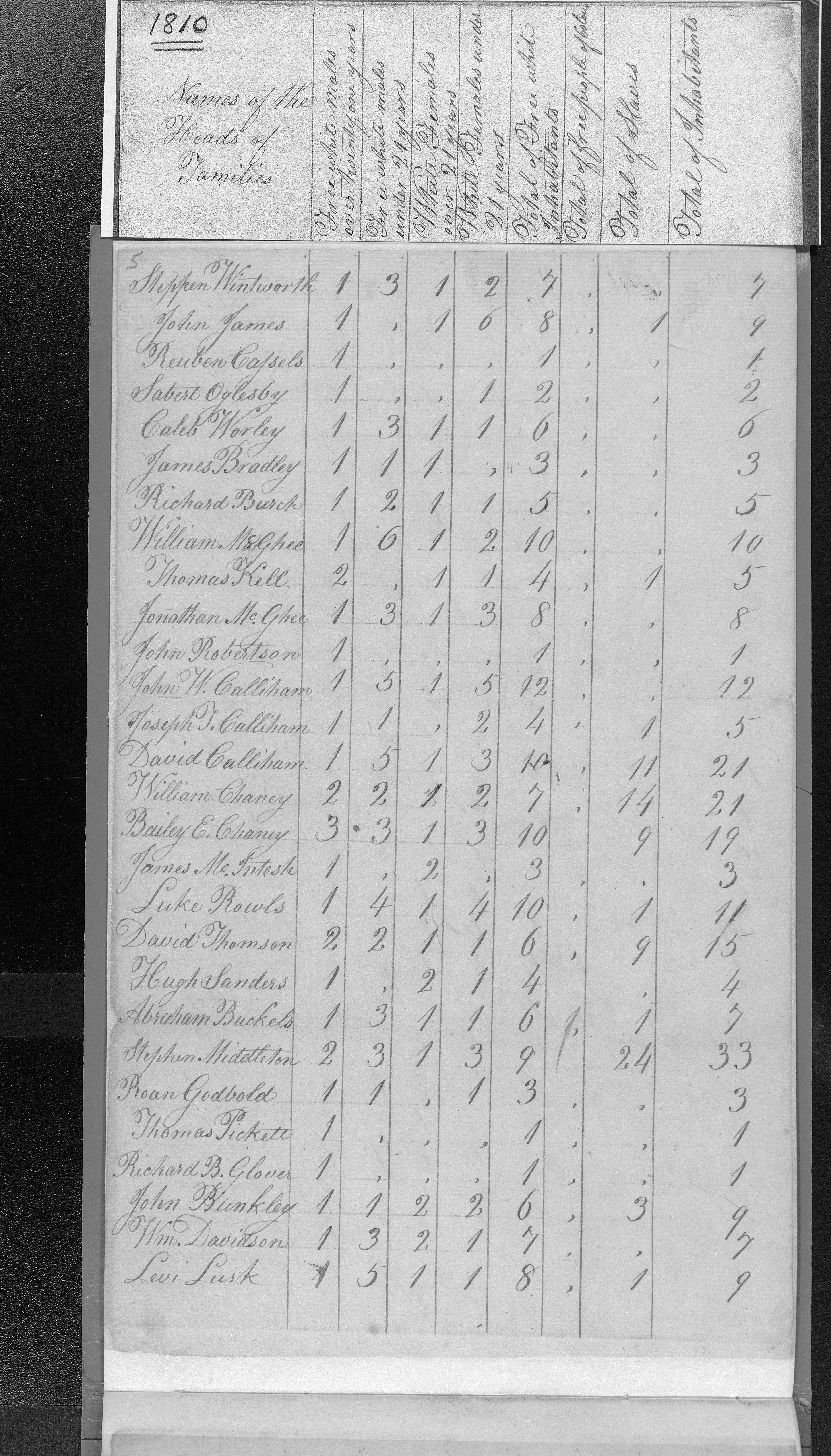 Jon Magee, Richard Burch, Will Magee and James Families in 1810 living in Franklin Co MS