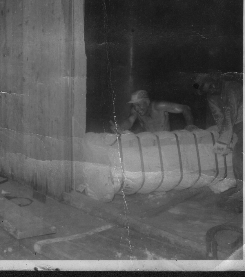 Vin McCabe working cotton bale in hold of ship circa 1946